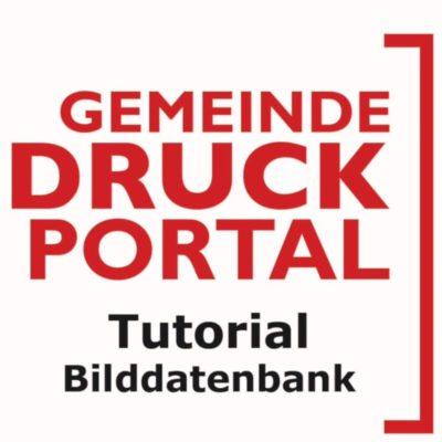 gdp-tut-bilddatenbank-800